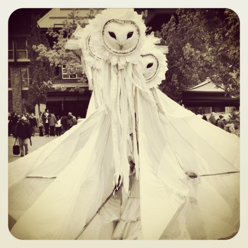 lady owls!